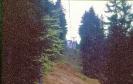 Jahresausflug_1986_Oberstdorf_4