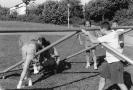 Wentalpokal-Turnier_1993_1